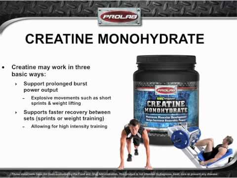 Prolab Performance Supplements