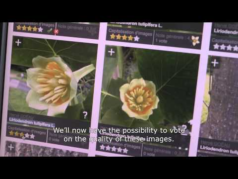 hqdefault 10 best gardening apps for Android Android