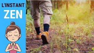 L'INSTANT ZEN #012 - Marche dans la forêt de la Combe à l'eau (Île de Ré)