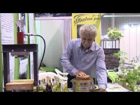 Кедровое масло 100%, холодного отжима (Сибирский продукт
