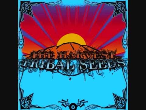 Tribal Seeds - Libertad ft. Dready