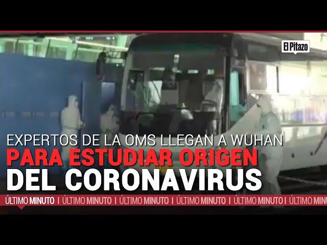 Expertos de la OMS llegan a Wuhan para estudiar origen del coronavirus