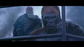 Prinz Pi x 20th Century Fox - Planet der Affen: Survival