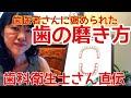 歯科衛生士さん直伝 歯の磨き方 の動画、YouTube動画。