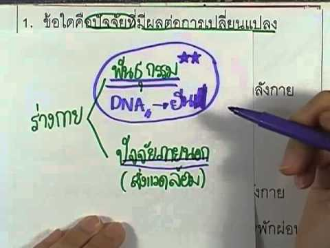 ข้อสอบO-NET ป.6 ปี2552 : สุขศึกษาและพลศึกษา ข้อ1
