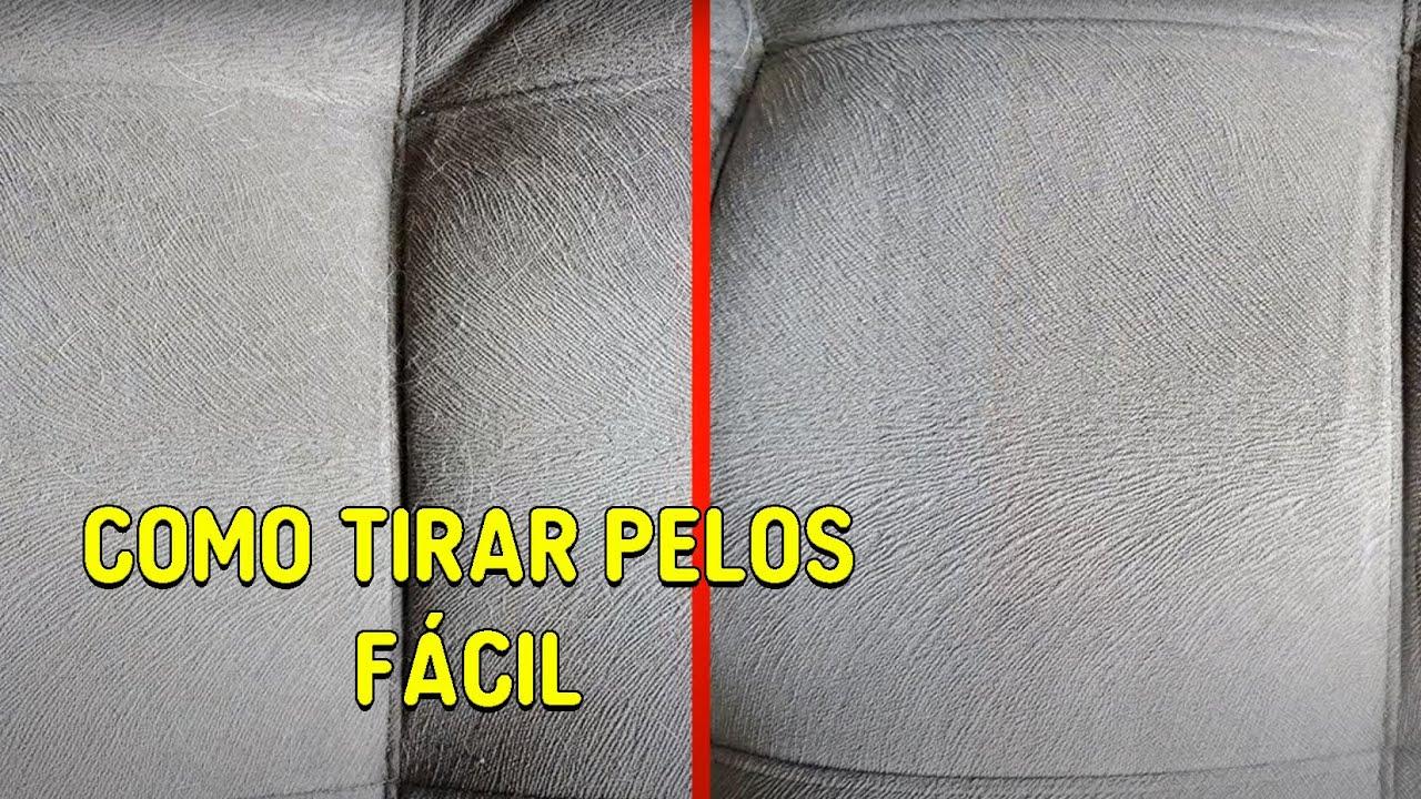 950d33360 COMO TIRAR PELOS DE ANIMAIS DAS ROUPAS, DO SOFÁ... FÁCIL E RÁPIDO. - Gatil  Hauser