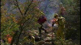 Prescribed Fire: Maintaining the Balance