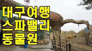대구여행코스 가볼만한곳 추천 스파밸리 네이처파크 동물원…