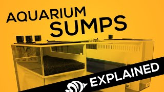 Aquarium Sumps EXPLAINED: Your Hub for Water Filtration and Automation Hardware