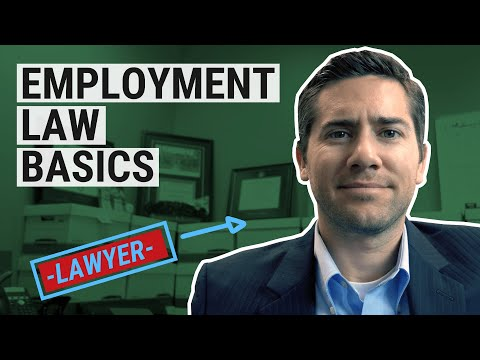 Employment Law Basics For Business Owners, Managers & HR - Avoid Getting Sued