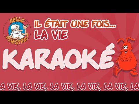 Il était une fois... La Vie - Karaoke