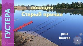 Русская рыбалка 4 река Волхов Густера на червя