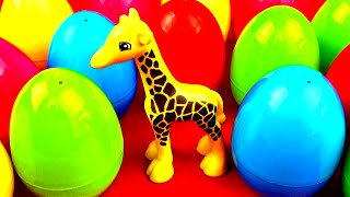 zoo wild animals surprise eggs panda lion king cub rhino monkey camel tiger leopard toys fluffyjet