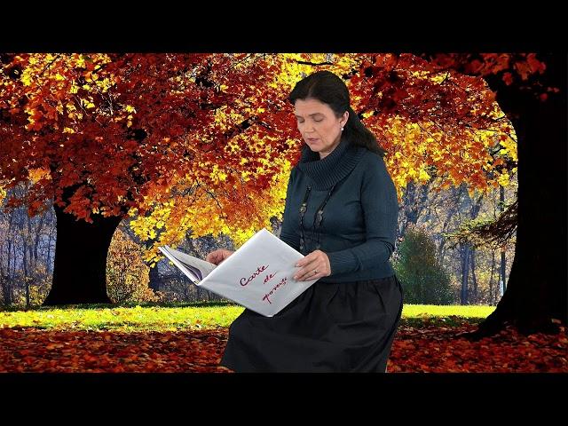 KinetoBebe - Citim impreuna povesti - Nadia Tataru, povestitor