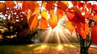 Patricia Kaas Autumn Leaves