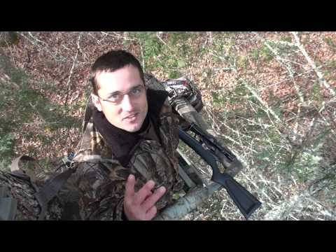 Virginia Public Land Deer Hunt - Big Buck Killed In National Forest 2012