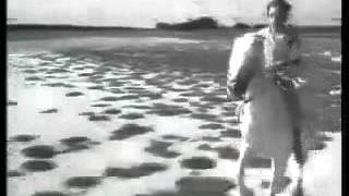 Trailer CRIN BLANC (F 1953) von Albert Lamorisse (OV)