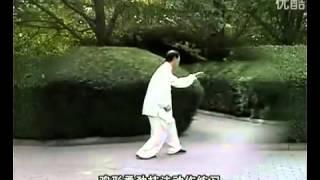 Animal forms, Bashi Quan, Za Shi Cui and An Shen Pao pair complex) by the master Sun Xu