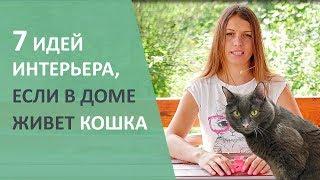 Идеи для кота. Интерьер квартиры, если в нем живёт кошка.