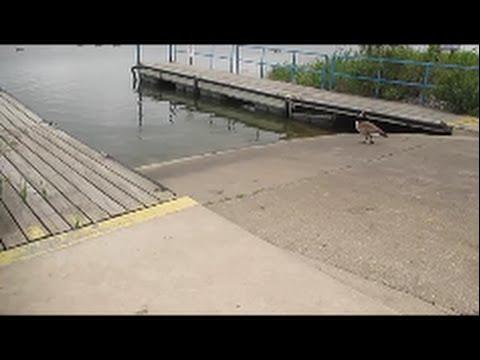 Boat Launch Wolf Lake Info
