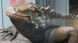 Крокодил, прикнулся неподвижным,в воде стартует со скоростью  до 60 км/час