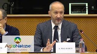 FederUnacoma: andamento del mercato e obiettivi 2018