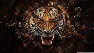 Survivor - Eye Of The Tiger (Ortal Israel Remix)