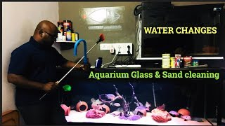 Fish tank cleaning process | Water change | Glass & Sand Cleaning | TAMIL