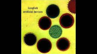 Lungfish - Black Helicopters
