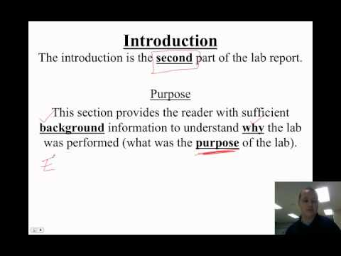 whats in a lab report