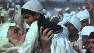 El León del Desierto. Protagonizada por Anthony Quinn y Oliver Reed