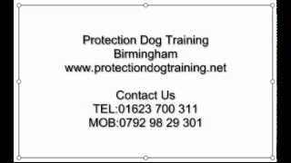 Protection Dog Training Birmingham
