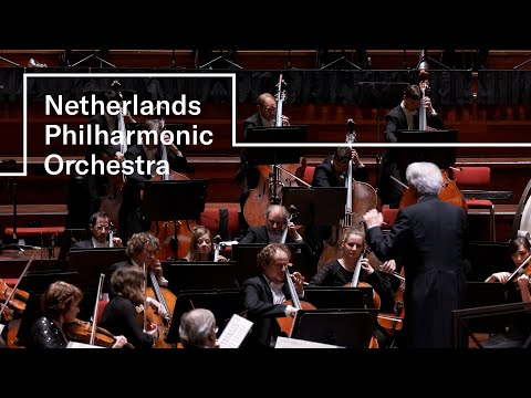 Brahms - Symphony No. 1   Netherlands Philharmonic Orchestra   Hartmut Haenchen   Concertgebouw