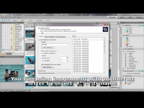 ACDSee Photo Manager 12 - Batch Rename
