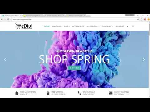 How To Create An eCommerce Website With WordPress 2017 Divi Theme ...