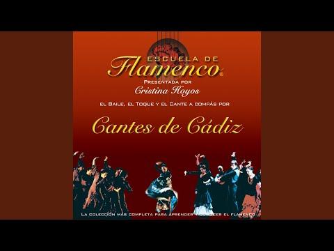 Rosas: Cante, Guitarra y Compás
