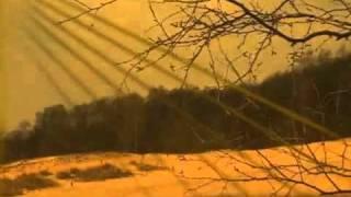 Pat Metheny - Oasis.
