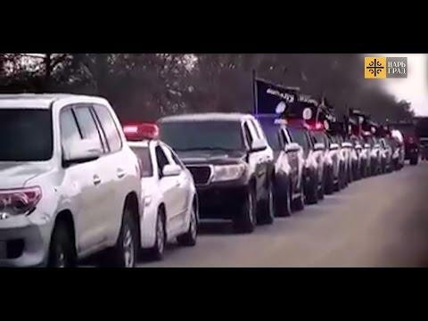 знакомства в либии
