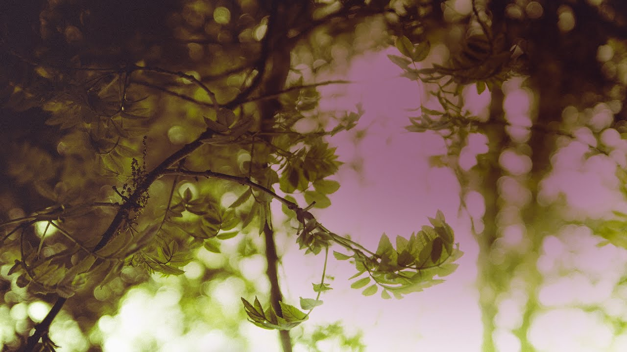Gorm Sorensen - Opening Leaves (Stray Theories Remix) [Silk Music]