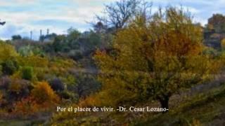 POR EL PLACER DE VIVIR. -DR. CESAR LOZANO-