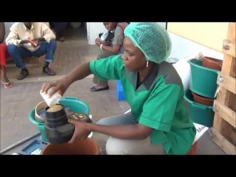 Tester La Qualité Du Mil Au Sénégal