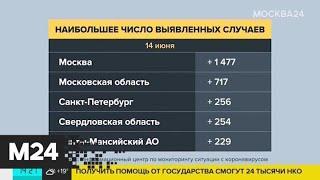 В России выявлено 528 964 случая COVID-19 - Москва 24