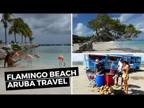 Exploring Aruba | Travel Video - Sophie Davis