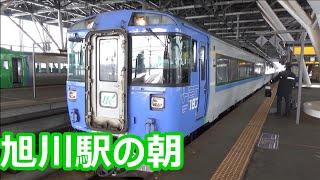 【北海道第二のターミナル!】JR北海道 旭川駅にやってくる特急列車たち!【宗谷・オホーツク・大雪・・・】