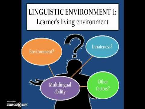 Universal Grammar in Second Language Acquisition