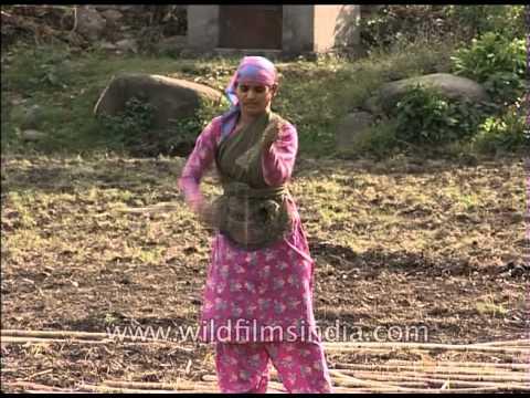 Women working in the fields in rural Uttarakhand