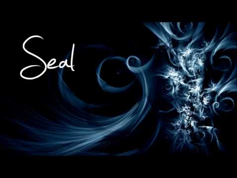 Seal - The Right Life