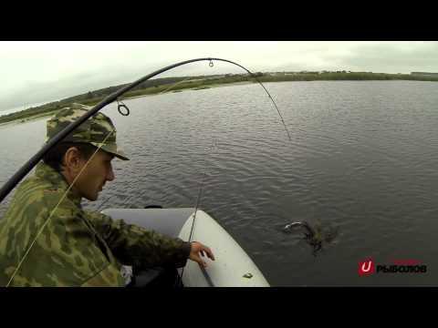 ловить щуку в челябинской области