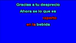 LA TRAKALOSA DE MONTERREY Borracho de amor version mariachi karaoke