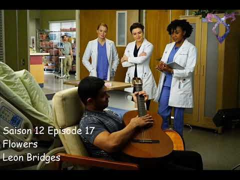 Grey's Anatomy S12E17 - Flowers - Leon Bridges